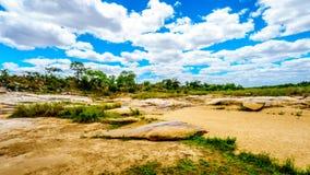 Grandes rochas em Sabie River quase seca no parque nacional central de Kruger foto de stock