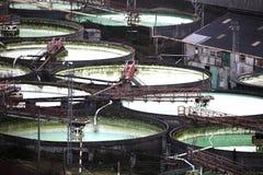 Grandes tanques industriais concretos abertos Fotos de Stock