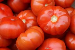 Grandes tomates fraîches à vendre à un marché en plein air Image libre de droits