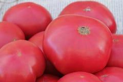 Grandes tomates roses sur le marché Photos stock