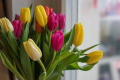 Grandes tulipes multicolores jaune-orange et rouges dans un vase en verre sur le favori de cadeau de rebord de fenêtre photographie stock libre de droits