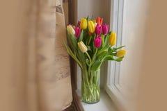 Grandes tulipes multicolores jaune-orange et rouges dans un vase en verre sur le favori de cadeau de rebord de fenêtre image stock
