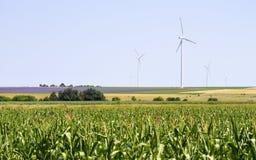 Grandes turbinas eólicas no campo agrícola Imagens de Stock Royalty Free