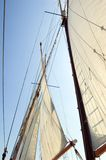 Grandes voiles Photographie stock