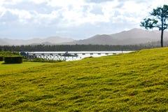 Grandes vues du champ, des montagnes et de l'océan Photographie stock