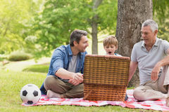 Grandfather father and son with picnic basket Stock Images