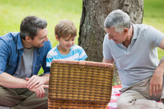 Grandfather father and son with picnic basket at park Stock Image