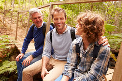 Grandfather, father and son sitting on a bridge in a forest Royalty Free Stock Images
