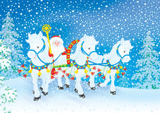Grandfather Frost. Drives in his sledge pulled by three white horses through a snowy forest Royalty Free Stock Photos