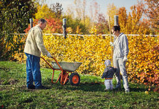 Grandfather giving grandson ride in wheelbarrow Stock Photos