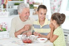 Grandfather and grandchildren eating fresh strawberries at kitch. Portrait of grandfather and grandchildren eating fresh strawberries at kitchen Royalty Free Stock Photo
