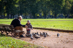 Grandfather and granddaughter age 4 years feeding pigeons Royalty Free Stock Photos