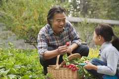 Grandfather and granddaughter in garden royalty free stock photo