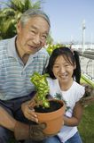 Grandfather and granddaughter gardening Stock Photo