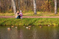 Grandfather with granddaughter look on ducks. Grandfather with granddaughter in wood in autumn look on ducks in water Royalty Free Stock Photography
