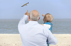 Grandfather with granddaughter looking at seagulls Stock Image