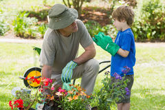 Grandfather and grandson engaged in gardening. View of a grandfather and grandson engaged in gardening Royalty Free Stock Photo