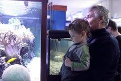 Grandfather with grandson at oceanarium Stock Photos