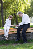 Grandfather and grandson playing chess in a park. On sunny day Stock Photos