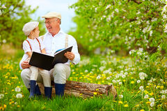 Grandfather with grandson reading book in spring garden royalty free stock image