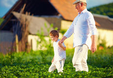 Grandfather and grandson together on their homestead, among potatoes rows Stock Photo