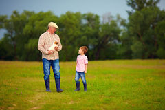 Grandfather and grandson walking through the green field, with puppy in hands Royalty Free Stock Images