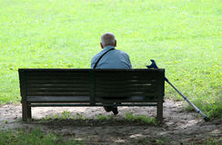 Free Grandfather In Park Stock Photo - 1118820