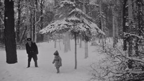 Grandfather in military uniform push trunk of spruce by leg. Snow falls. Grandson stay under tree. Grandfather in military uniform push trunk of spruce by leg stock footage