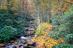 Grandfather Mountain Stream North Carolina Royalty Free Stock Photo