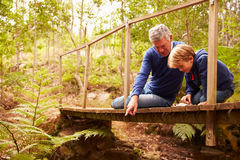 Grandfather playing with grandson on a bridge in a forest Stock Photos