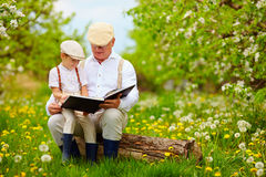 Grandfather reading a book to his grandson, in blooming garden royalty free stock photography