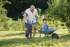Grandfather rolls the children Royalty Free Stock Images
