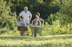 Grandfather rolls the children Royalty Free Stock Photo