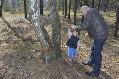 Grandfather showing granddaughter how birch sap is flowing in th Stock Photography
