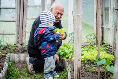 Grandfather showing vegetables to his grandson