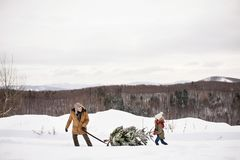 Grandfather and small girl getting a Christmas tree in forest. Grandfather and a small girl getting a Christmas tree in forest. Winter day Royalty Free Stock Photos
