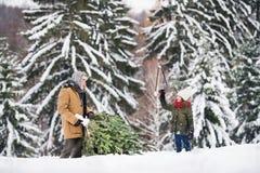 Grandfather and small girl getting a Christmas tree in forest. Grandfather and a small girl getting a Christmas tree in forest. Winter day Stock Images