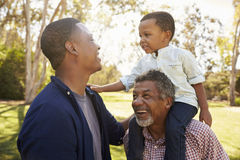 Grandfather With Son And Grandson Having Fun In Park Stock Image