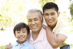 Grandfather With Son And Grandson In Park Royalty Free Stock Photo