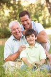 Grandfather With Son And Grandson In Park Royalty Free Stock Images