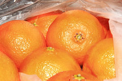 Grandi arance Fotografia Stock