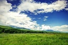 Grandi campi verdi con il cielo nuvoloso Fotografia Stock Libera da Diritti