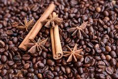 Grandi chicchi di caffè aromatici, spezia dell'anice per i dolci, dolci, bastoni di cannella e chiodi di garofano Generi differen immagine stock libera da diritti