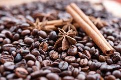 Grandi chicchi di caffè aromatici, spezia dell'anice per i dolci, dolci, bastoni di cannella e chiodi di garofano Generi differen immagini stock libere da diritti