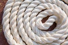 Grandi corde marine del mare in mucchio Fotografia Stock Libera da Diritti