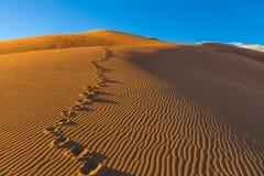 Grandi dune di sabbia immagini stock libere da diritti