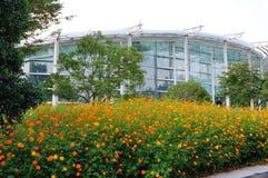 Grandi fiori di rosso arancio Immagini Stock Libere da Diritti