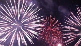 Grandi fuochi d'artificio naturali di colore stock footage
