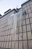 Grandi ghiaccioli Fotografia Stock Libera da Diritti