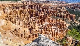 Grandi guglie scolpite via tramite erosione Fotografie Stock